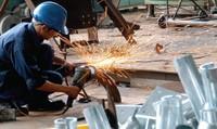 Vấn đề lao động trong Hiệp định CPTPP: Công đoàn không nên bị giới sử dụng lao động can thiệp