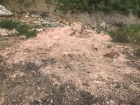 Huyện Chợ Mới, Bắc Kạn: Hàng trăm mét khối chất thải đổ trộm có thể rất độc hạihot
