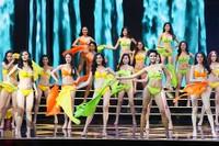 Bộ Văn hóa dừng cuộc thi Hoa hậu Hoàn vũ Việt Nam
