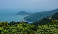 Tạm dừng tham quan bán đảo Sơn Trà, cấm xe một số tuyến đường ở Đà Nẵng
