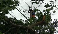 EVNCPC khẩn trương cấp điện trở lại sau cơn bão số 12