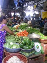 Ngáo ngơ... chợ niêm yết giá