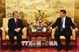 Tổng Bí thư, Chủ tịch Trung Quốc Tập Cận Bình tiếp đồng chí Trần Quốc Vượng