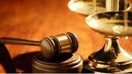 Văn bản quy phạm pháp luật do Chính phủ, Thủ tướng Chính phủ ban hành trong tháng 01 năm 2014