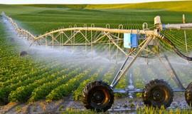 Sản xuất nông nghiệp công nghệ cao của Lâm Đồng đạt giá trị cao nhất nước