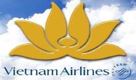 Thương hiệu Vietnam Airlines  giá bao nhiêu?