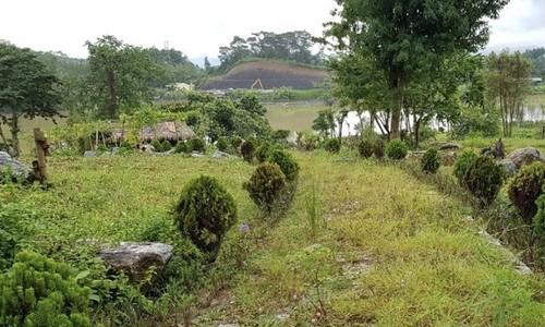 Khu vườn hoa được trồng ven hồ Huổi Phạ