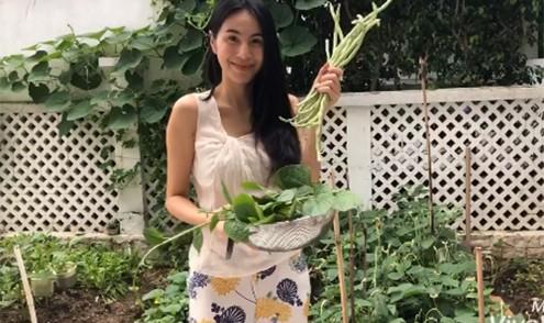 Thú vị hình ảnh Thủy Tiên ra vườn cắt rau, khoe ăn không hết mang bán