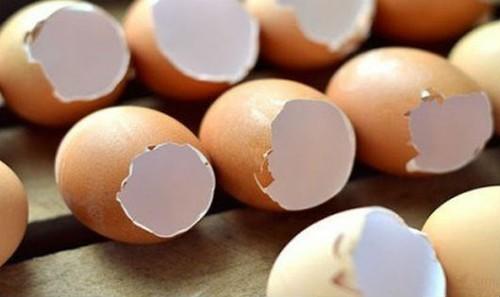Tuyệt chiêu đánh sạch vết bẩn trong máy xay sinh tố bằng vỏ trứng