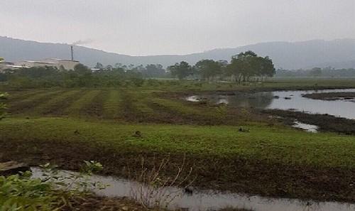 Chủ tịch UBND huyện kiến nghị thu hồi 13 lô đất mà ông Hồ Hữu Phúc đã chiếm đoạt