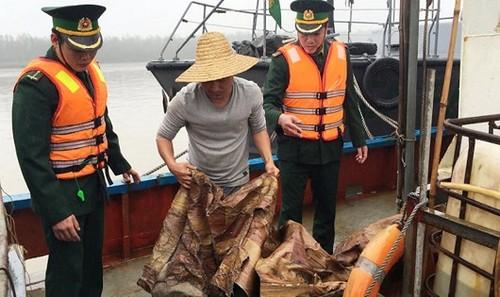 Bộ đội Biên phòng Hải Phòng kiểm tra số lượng dầu không rõ nguồn gốc trên tàu Trung Quốc.