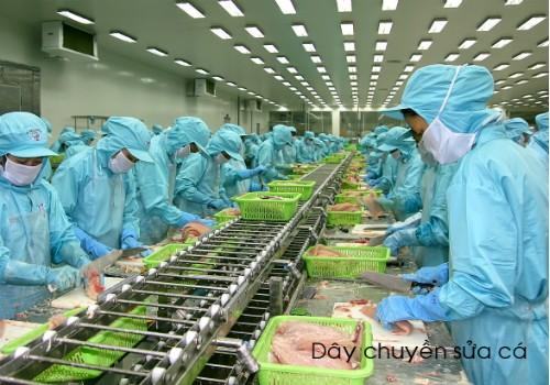 Khung cảnh nhôn nhịp của hàng ngàn công nhân trong nhà máy đang miệt mài thi đua sản xuất