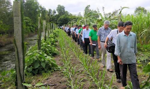 Ông Nguyễn Thành Long (thứ 5 từ phải sang) thường xuyên tổ chức những chuyến đi cơ sở, đồng hành cùng bà con nông dân trồng mía tại Hậu Giang.