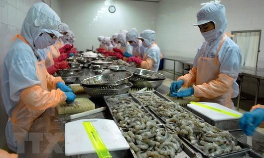 Làm gì để phát triển bền vững ngành tôm Việt Nam?