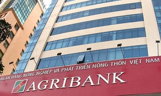 """Nghi vấn có """"chống lưng"""", công ty Tân Nam Việt được """"dàn xếp"""" trúng hàng loạt gói thầu tại các chi nhánh Agribank?"""