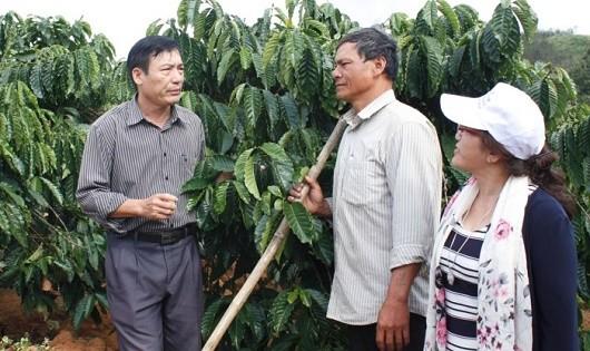 Tỷ phú cà phê trên cao nguyên Đắk Hà