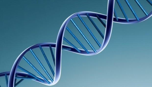Quy định về lấy mẫu giám định ADN xác nhận danh tính liệt sĩ