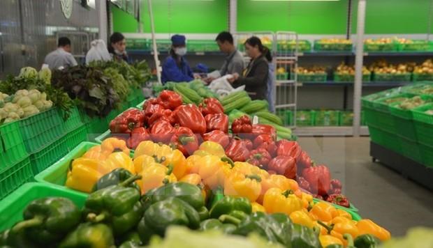 Xuất khẩu nông, lâm, thủy sản 11 tháng qua ước đạt trên 33 tỷ USD