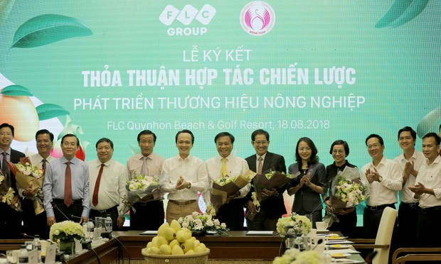 Tập đoàn FLC bảo hộ và phân phối thương hiệu Xoài Cao Lãnh