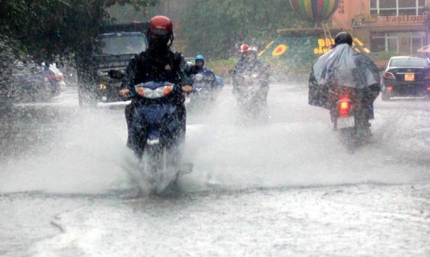Cảnh báo mưa rào từ miền Bắc vào miền Trung