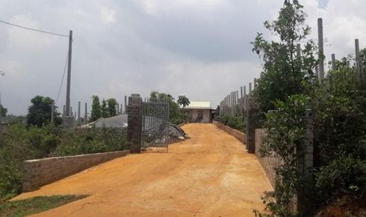 """Gia Lai: Hàng chục ngàn mét đất rừng """"vào tay"""" cán bộ quản lý rừng"""