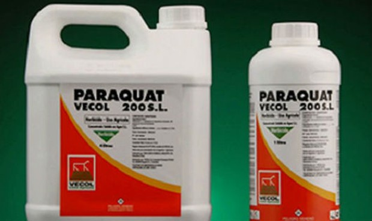 Tự tử bằng thuốc diệt cỏ paraquat: Những nỗi đau khủng khiếp!