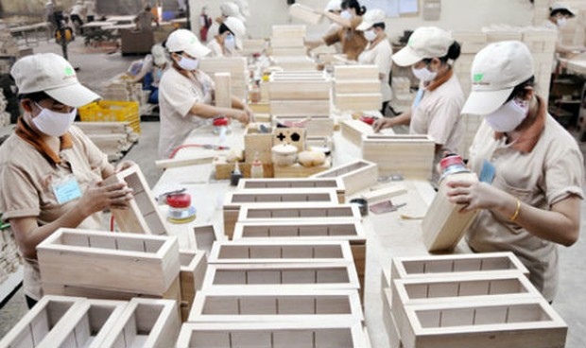 Phát triển công nghiệp chế biến gỗ xuất khẩu: Kiên quyết không sử dụng gỗ bất hợp pháp