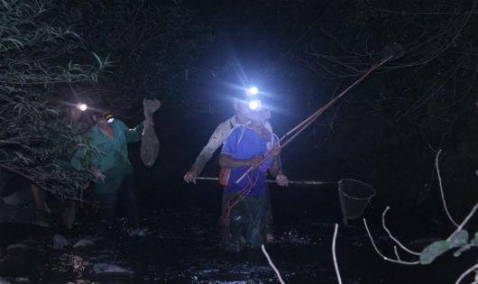 Đêm mưa săn 'vũ nữ chân dài' kiếm bộn tiền ở xứ Tuyên