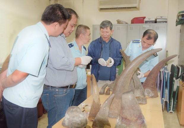 Hải quan lại phát hiện 13 sừng tê giác  vận chuyển qua đường hàng không