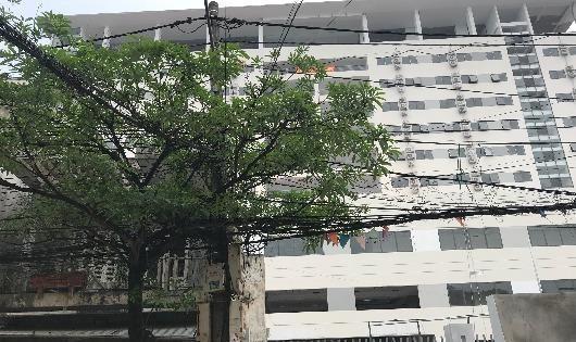 Thái Bình: Chủ đầu tư kiện ngược dân để thoái thác trách nhiệm trong việc gây lún nứt nhà ở?