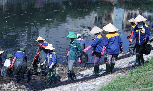 Trả lại sự tinh khiết cho nước sông Tô Lịch