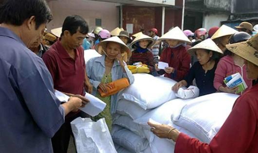 Quảng Trị: Phân bổ 200 tấn gạo Chính phủ hỗ trợ cho người dân bị thiên tai