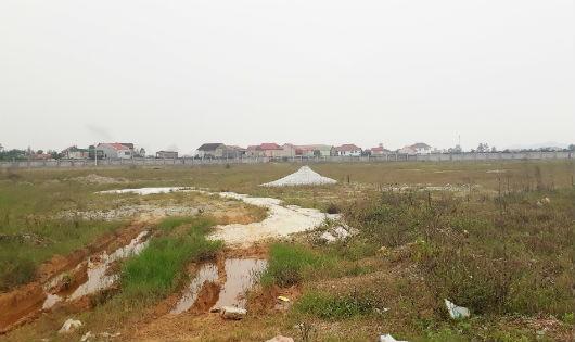 Nghệ An: Hàng chục ngàn m2 dự án bến xe 'bỏ hoang' để cỏ mọc