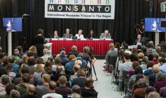 Hoan nghênh tòa quốc tế kết luận công ty Monsanto hủy diệt môi trường Việt Nam