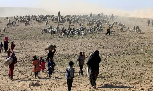 Tây Mosul đối mặt khủng hoảng nhân đạo