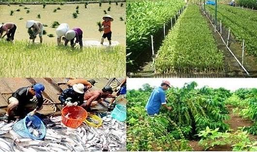 Hỗ trợ nông nghiệp 2.000 tỷ đồng/năm: 'Một cánh én nhỏ' có làm nên 'Mùa Xuân'?
