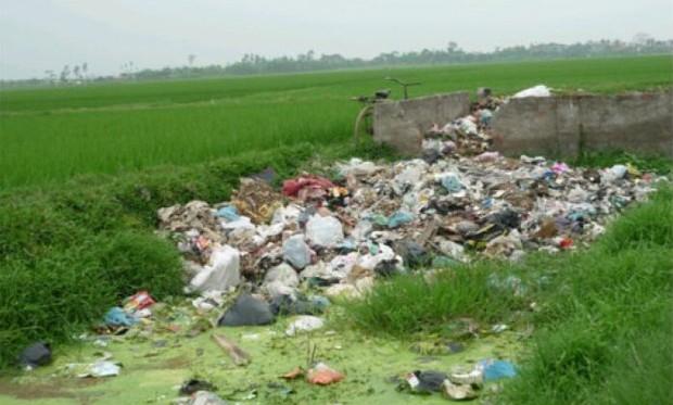 """Giải quyết ô nhiễm trong nông nghiệp là """"cánh cổng"""" để phát triển bền vững"""