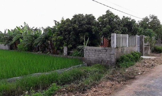 Huyện An Lão (TP Hải Phòng):  Điều tra hình sự vụ phân lô,  bán đất nền trái phép ở xã Tân Viên