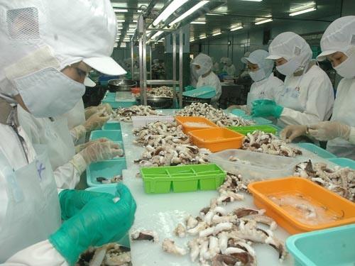 Việt Nam mở rộng thêm 9 thị trường xuất khẩu mực, bạch tuộc