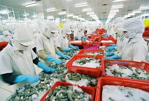 Xuất khẩu thủy sản đang tăng trưởng chậm lại