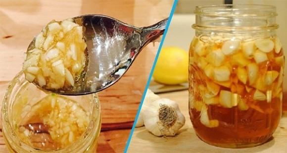 tỏi ngâm mật ong, tỏi và mật ong, tác dụng của hỗn hợp tỏi ngâm mật ong