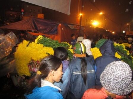 Những xe máy đầy ắp hoa cúc đang được tập kết dần đến chợ, ken chặt cả lối đi.