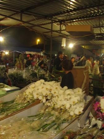 Trong chợ hoa, những gian hàng bán hoa địa lan và tulips Đà Lạt là những gian đắt khách lấy buôn nhất. Giá hoa không hề rẻ, tại đây mà đã 200 nghìn một cành địa lan, 120 nghìn một bó 10 bông tu lip. Vừa bán, cô chủ vừa cắm luôn hoa cho khách nếu có yêu cầu.