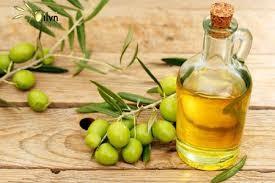 Kết quả hình ảnh cho Dầu olive