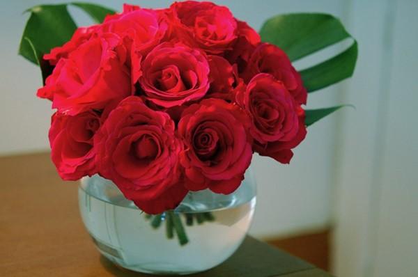 Kết quả hình ảnh cho cách cắm hoa hồng