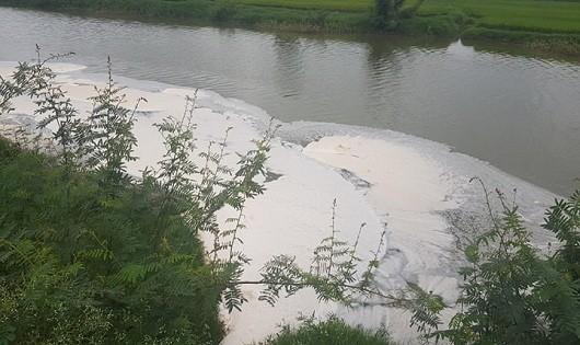 Bắc Giang: Hàng chục hộ dân phản đối xây dựng nhà máy xử lý rác thải