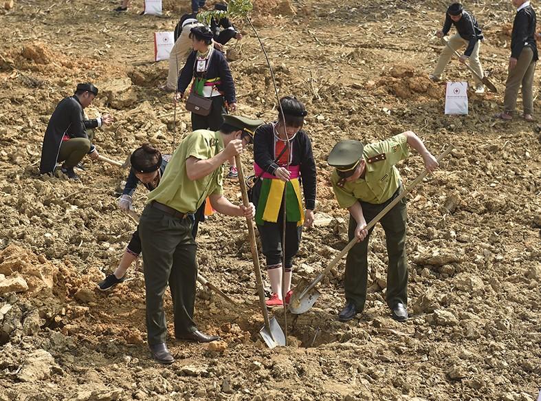 Tổng Bí thư, Chủ tịch nước Nguyễn Phú Trọng phát động Tết trồng cây - Ảnh 7