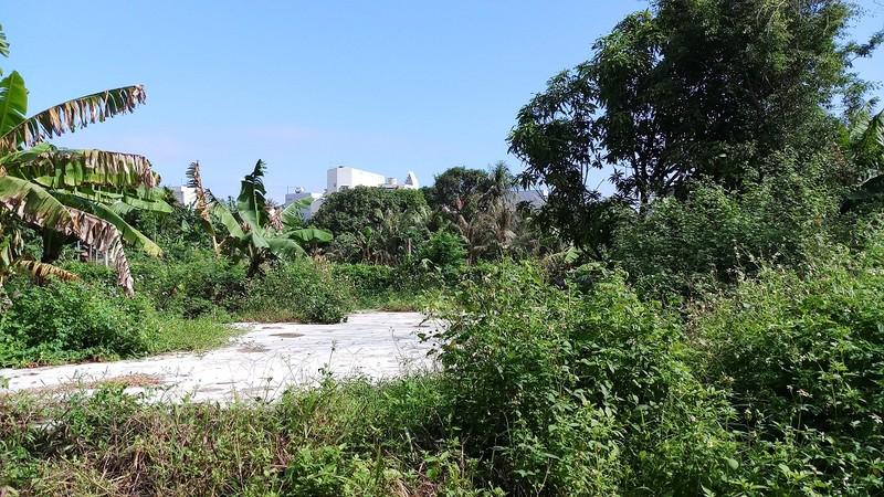 Phú Yên: Hộ dân ròng rã xin cấp sổ đỏ