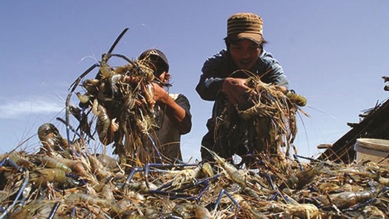 Khó khăn bủa vây, ngành Nông nghiệp vẫn tăng trưởng khá