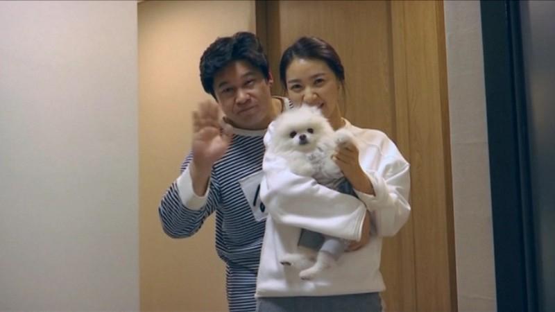 Giới trẻ Hàn Quốc thích nuôi thú cưng hơn kết hôn và sinh con